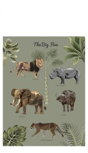 Little And Pure Poster Big Five Forest Groen Voorkant