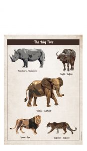 Little And Pure Poster Big Five Vintage