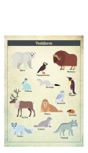 Little And Pure Poster Pooldieren Vintage Voorkant