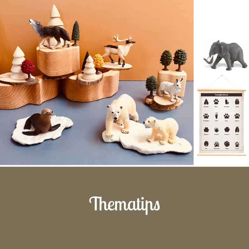 Thematips Banner Homepage